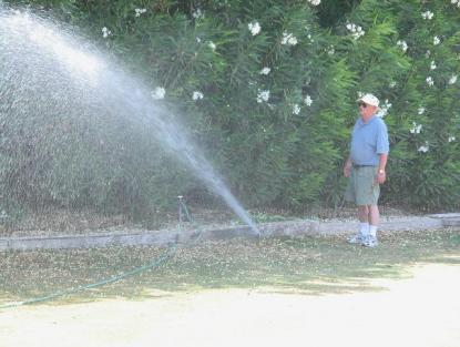 Littleton sprinkler repair success